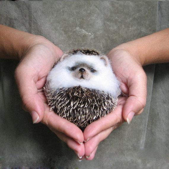 Gladoart hedgehog