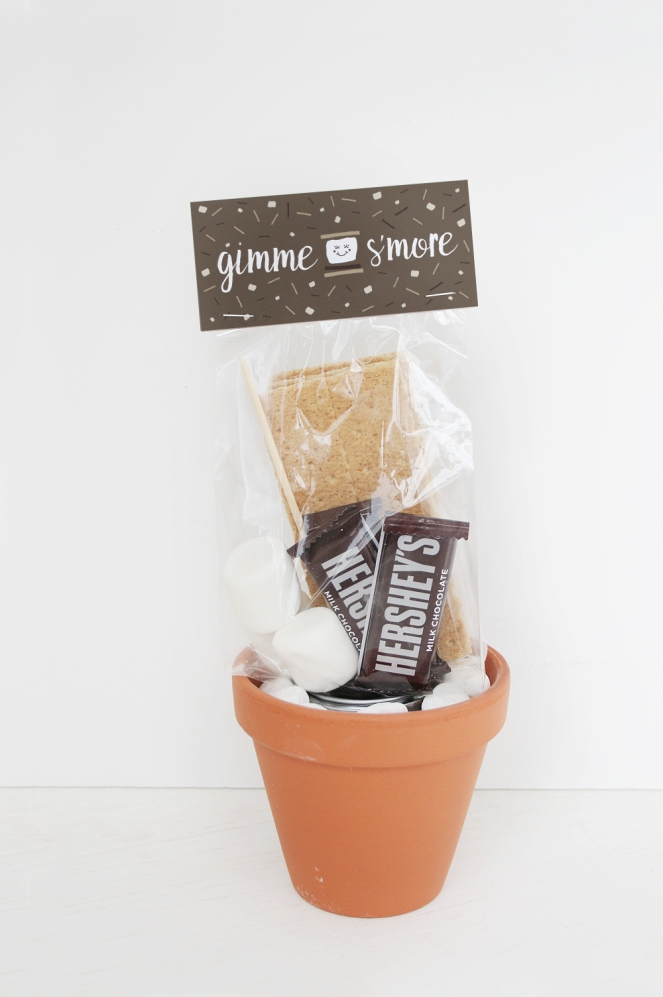 Mini-Smore-Kit Printable-7